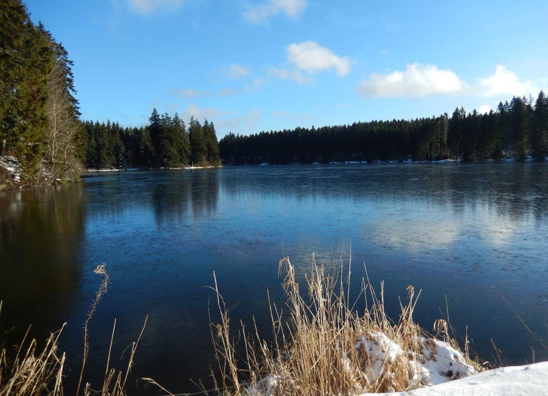 Foto Eis am Ziegenberger Teich Buntenbock